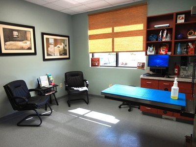 Large comfy exam room